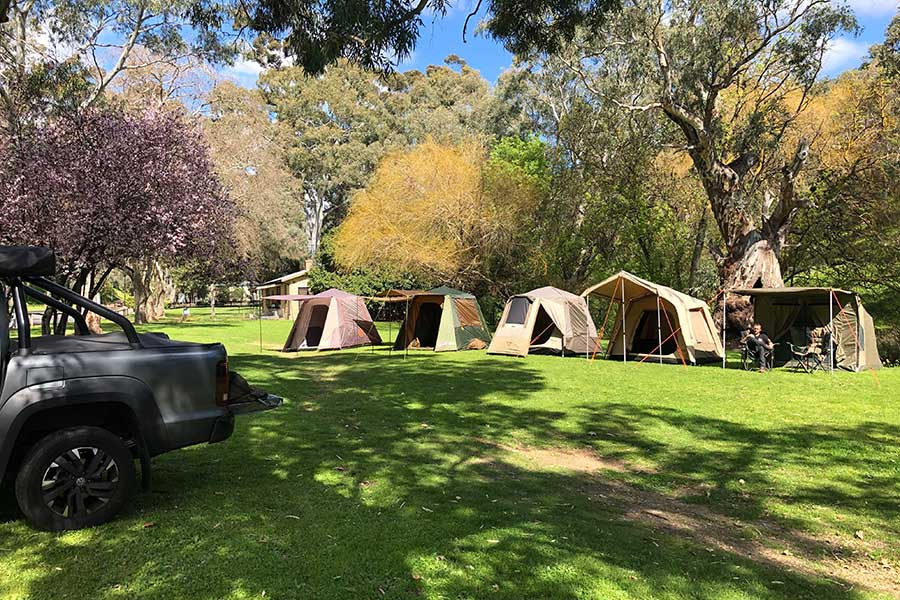 A number of touring tents lined up next to one another on the grass