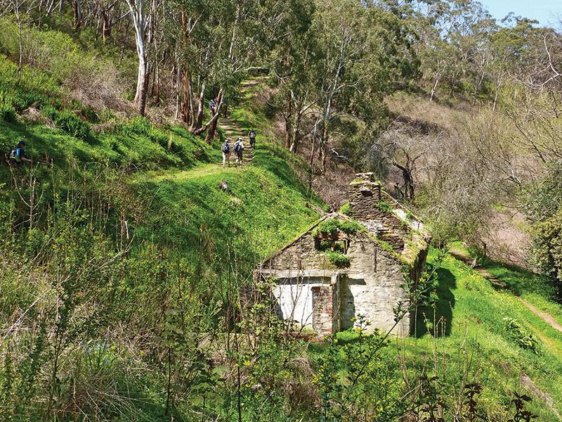 Hiking Near the Giles Ruins in Horsnell Gully