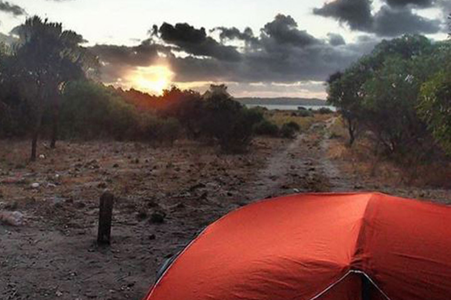 Avocet Campground, Parnka Point, Coorong National Park in South Australia