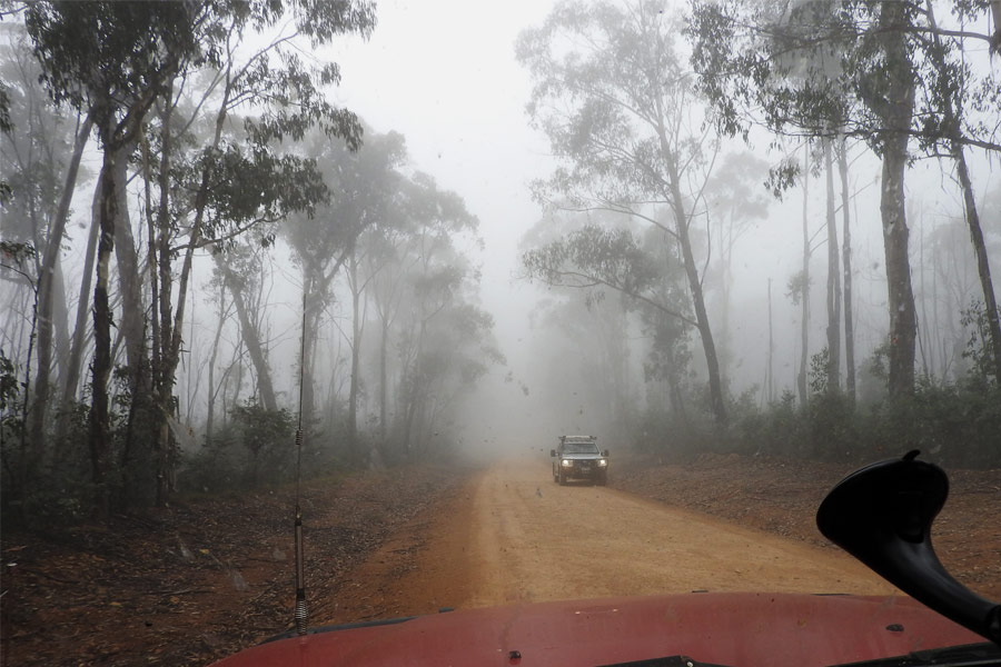 Driving in fog on the Dargo road