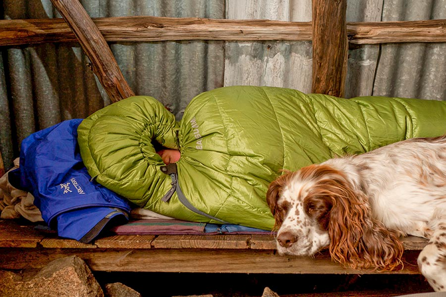Sleeping a sleeping bag next to dog