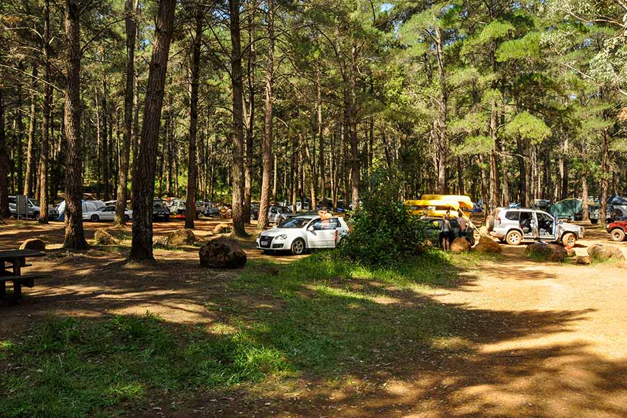 Camping at Dwellingup in the Pine Forest