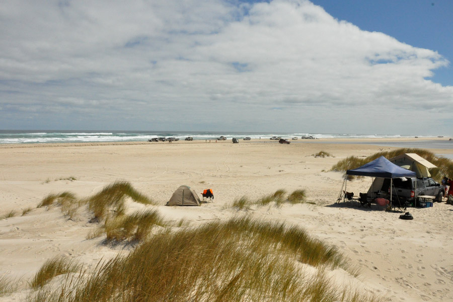 Camped-at-Yeagarup-on-the-beach