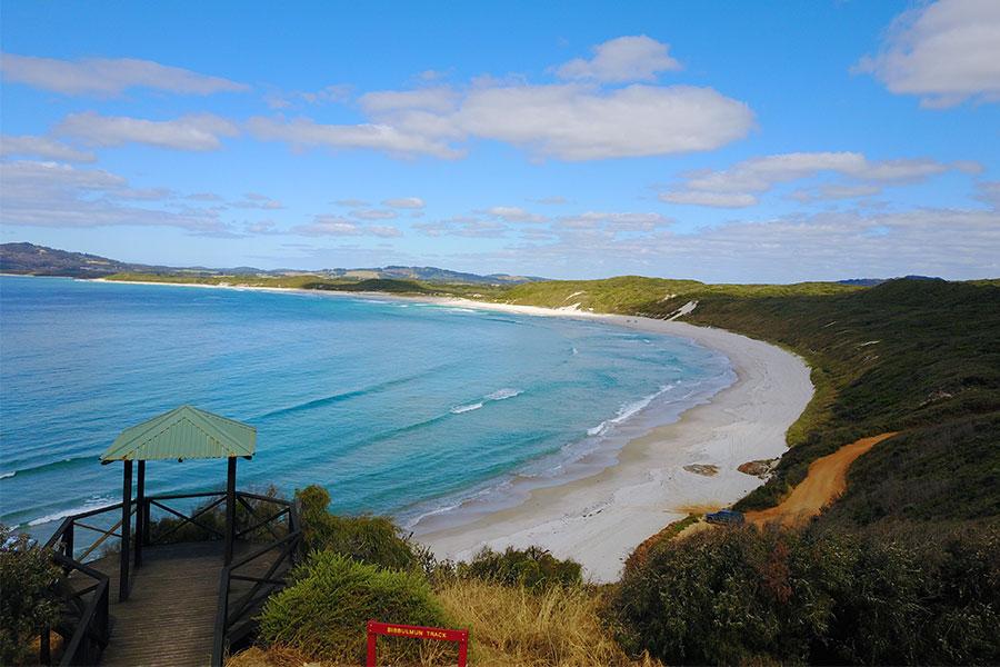 View of Mutton Bird Beach