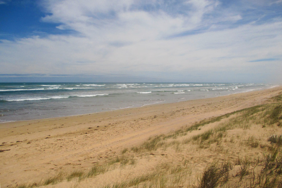 Wild-and-windswept-Coorong-meets-the-Southern-Ocean