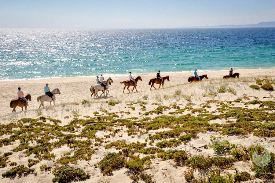 People horse riding on the beach in Lisbon, Portugal
