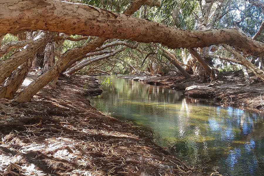 View of the stunning Nullagine River