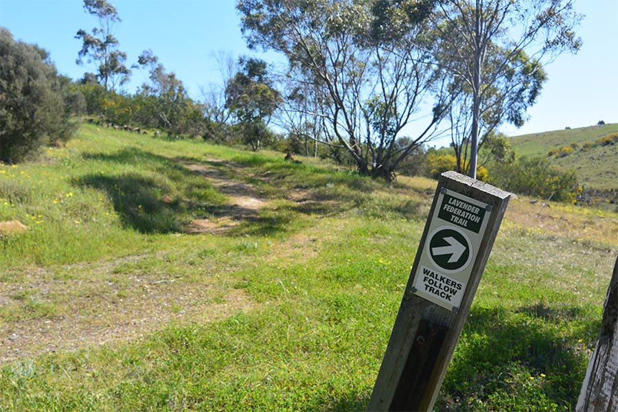Look for trail markers when walking along the Lavender Federation Trail