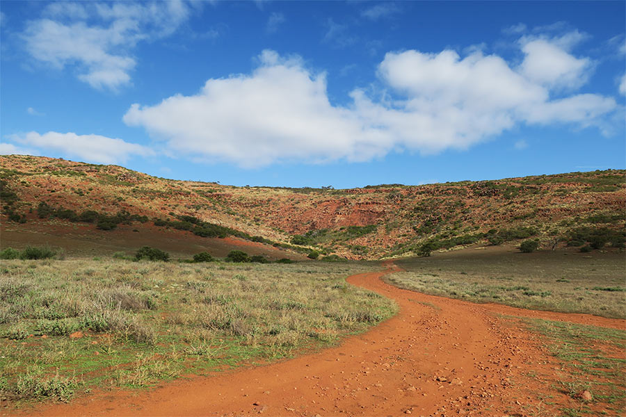 Blue sky and red dirt - a typical Gawler Ranges scene