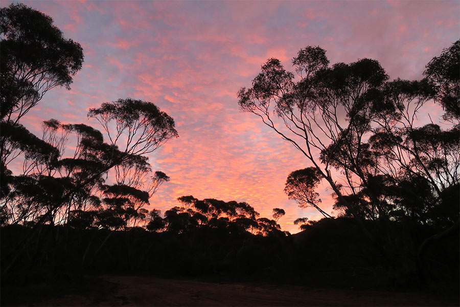 Pastel-Sunset-from-Scrubby-Peak-Campground