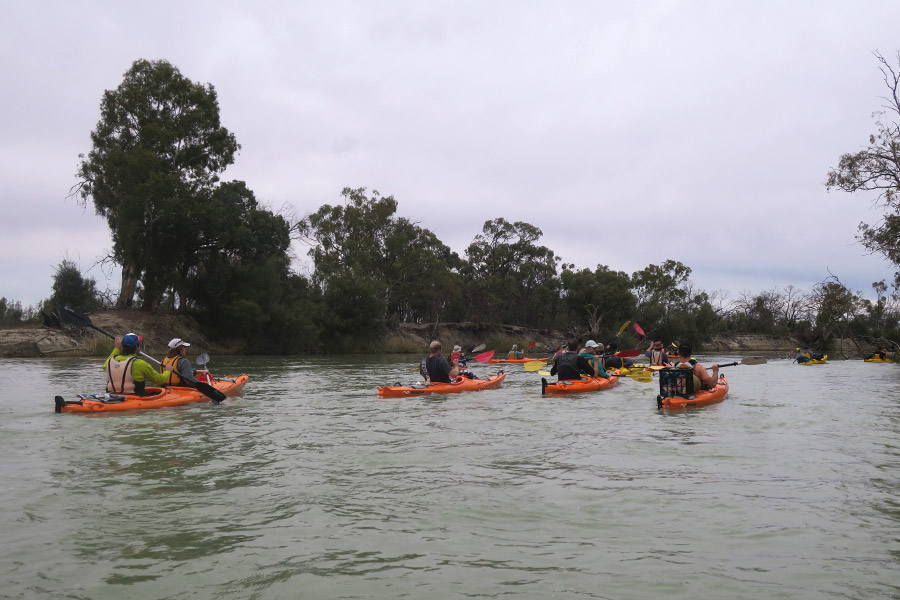 Group of kayakers take to the water