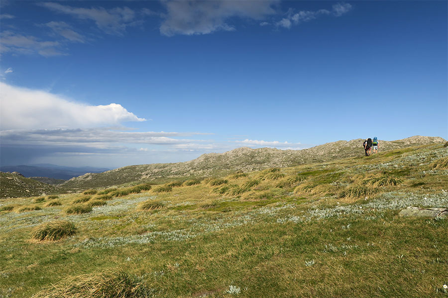Hikers walking up a hilly mountain on a walking trail