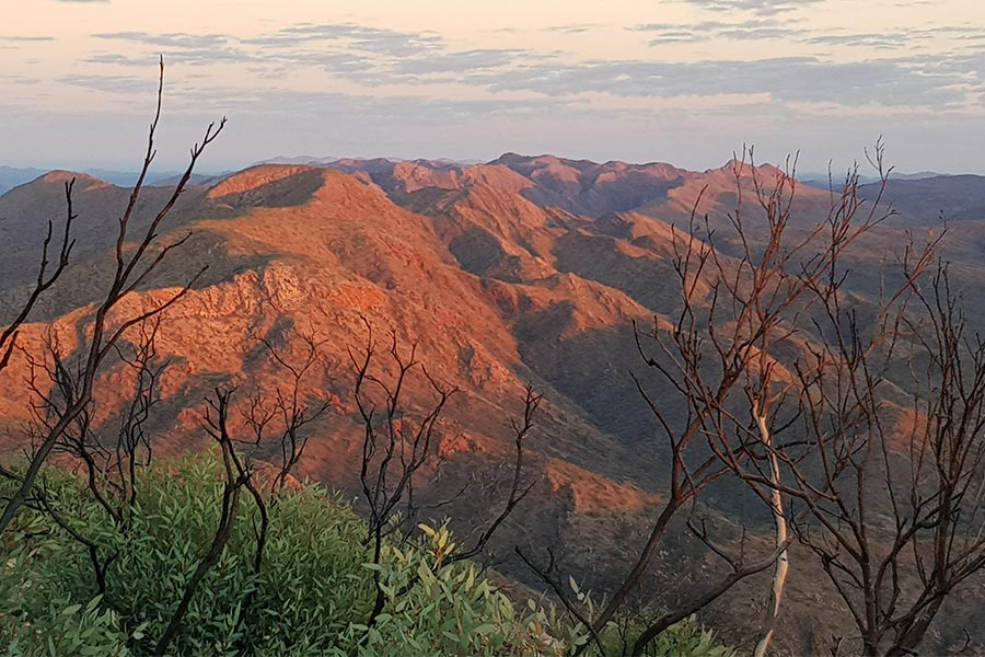 Morning-light-on-the-MacDonnell-Ranges
