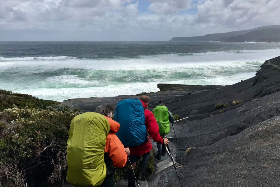 Hikers walking towards the Southern ocean along the South Coast Track