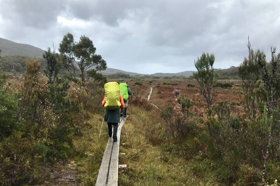 Hikers walking along the boardwalks along the plans on the South Coast Track