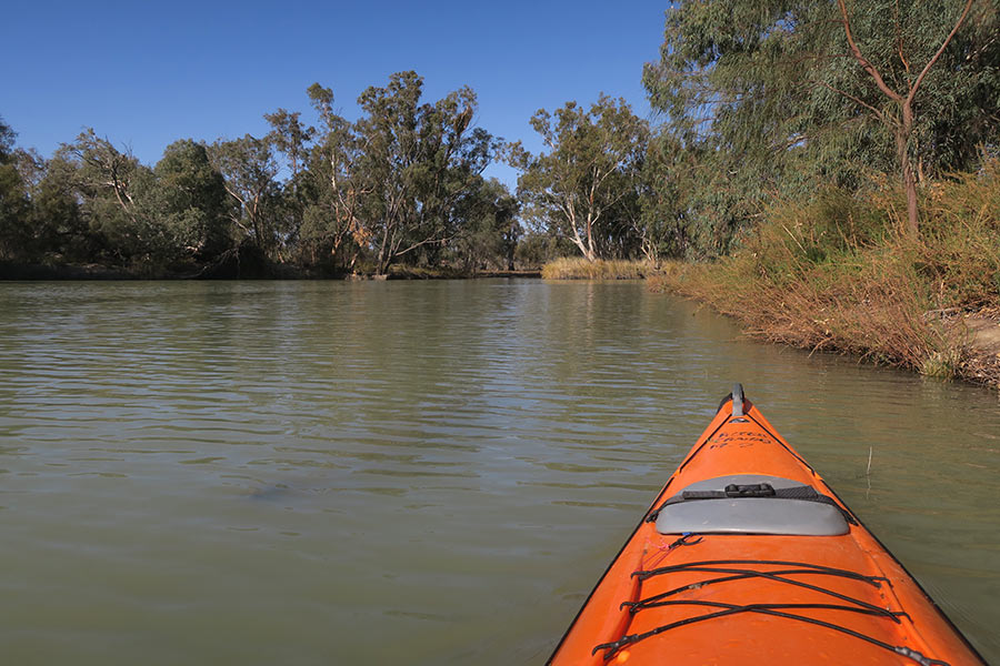 View from a kayak on the river