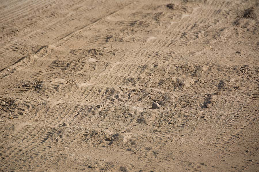A close up image of corrugations on a sandy road
