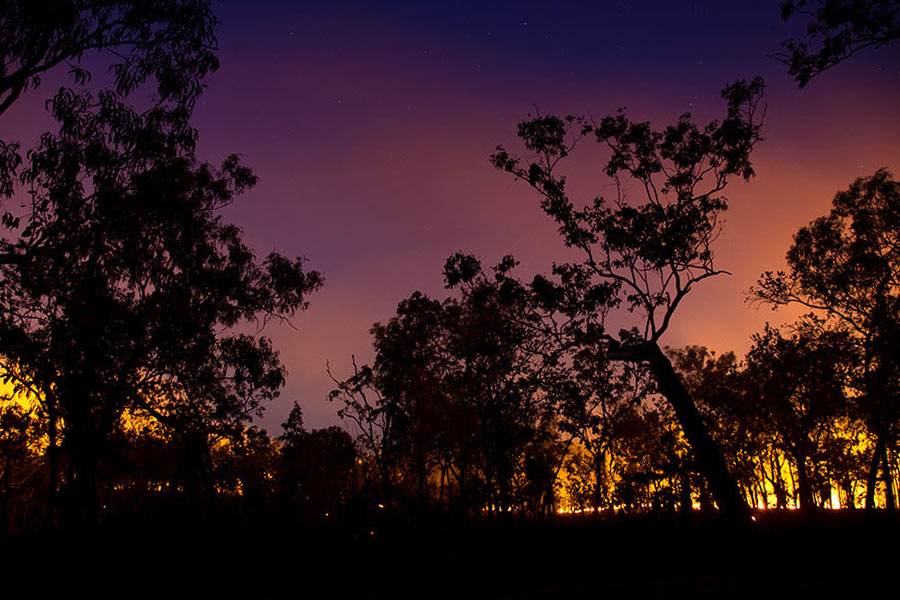 Vivid colours of a sky at sunset behind silhouetted trees