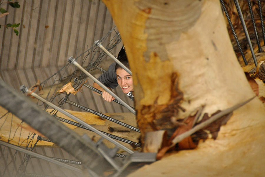 A woman looks up smiling, as she climbs a rope ladder that spirals around a tree