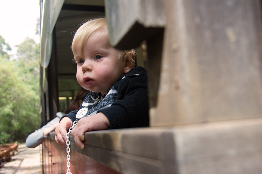 A toddler looks out of an open window on a tram, taking in the view.