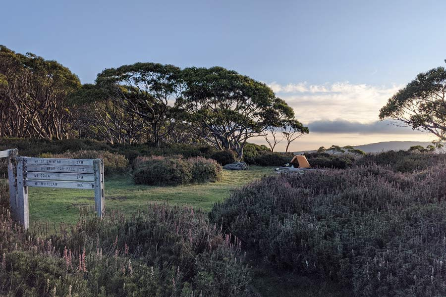 A campground in a clearing with peak views in the distance.
