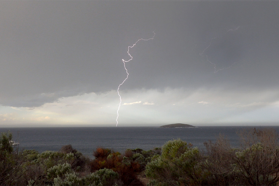 An impressive fork of lightning spearing through a dark stormy sky. There's coast shrubs in the foreground with dark ocean behind.