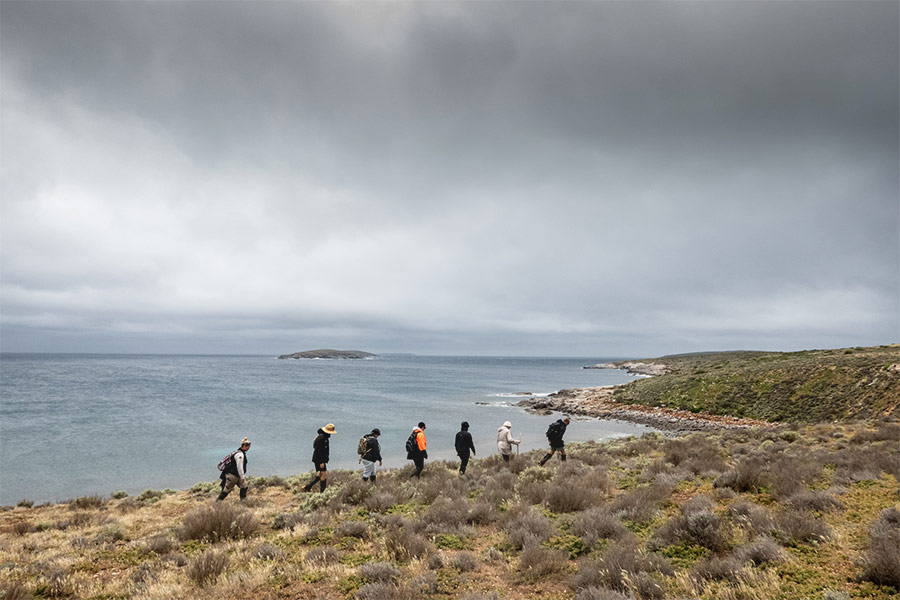 A group of 7 people walking in a line along a stretch of remote coastline.