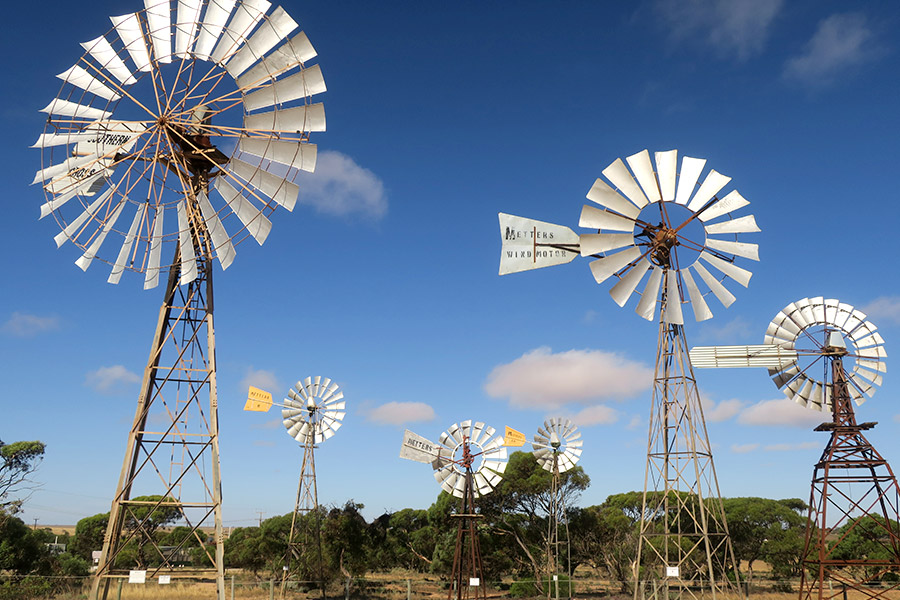 Six of the windmills on display at the Penong Windmill Museum.
