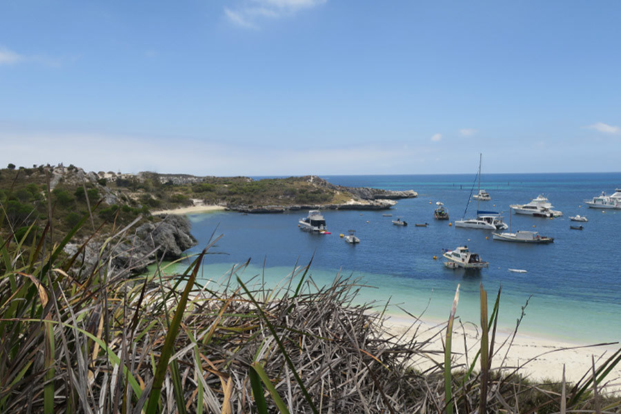 Many boats in the waters around Rottnest Island.