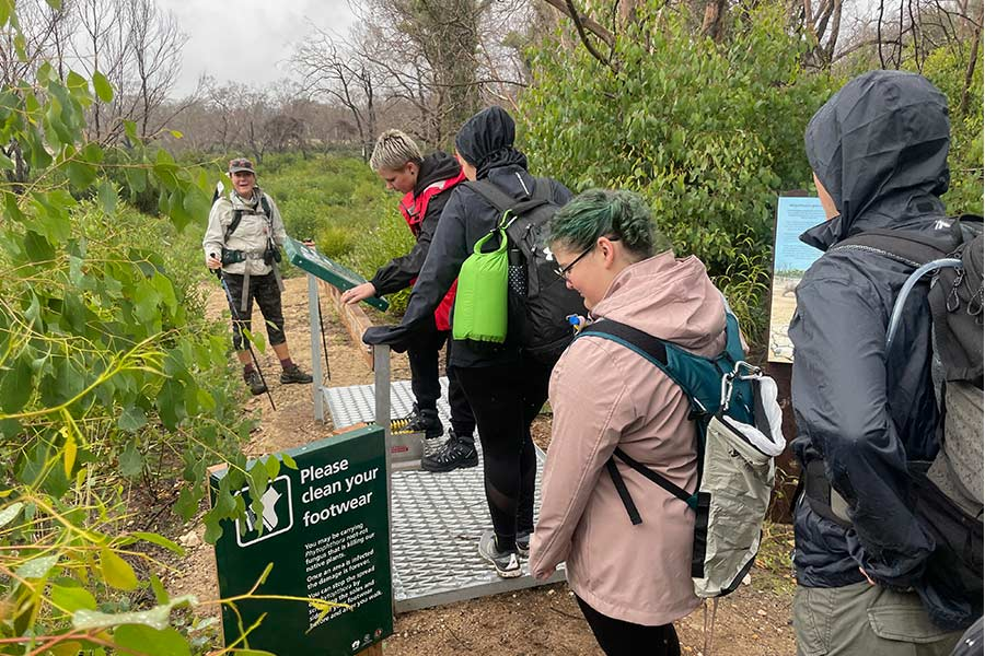 A small group of walkers waiting their turn at the footwear cleaning station to stop the spread of weeds post bushfire.