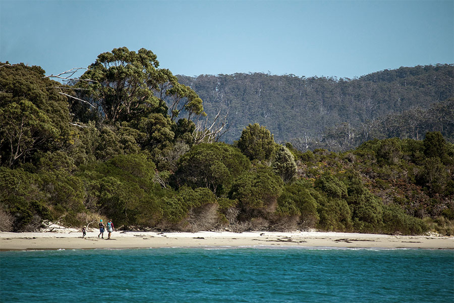 A beautiful beach scene taken from the ocean looking towards the shore. The sand meets thick bush and mountains and there are three people walking at a distance.