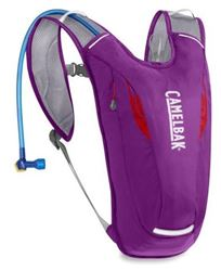 Picture of Camelbak Dart Hydration Pack Purple Cactus Flower